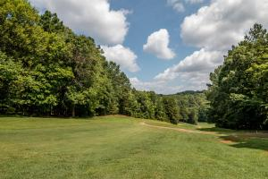 Winston Salem Golf Course Investment Property in Stokes, NC (41 of 92)