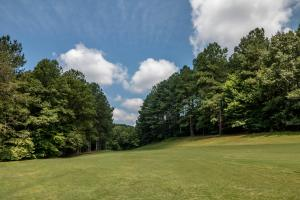Winston Salem Golf Course Investment Property in Stokes, NC (39 of 92)