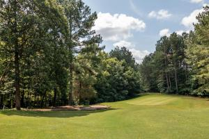 Winston Salem Golf Course Investment Property in Stokes, NC (44 of 92)