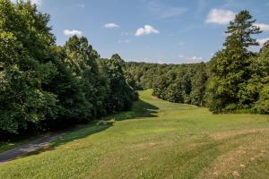 Winston Salem Golf Course Investment Property in Stokes, NC (82 of 92)