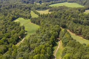 Winston Salem Golf Course Investment Property in Stokes, NC (52 of 92)
