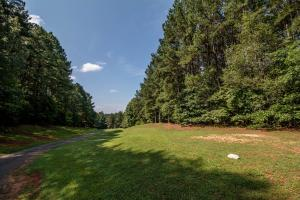 Winston Salem Golf Course Investment Property in Stokes, NC (79 of 92)