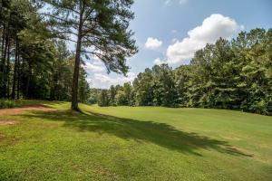 Winston Salem Golf Course Investment Property in Stokes, NC (47 of 92)
