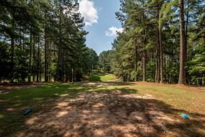 Winston Salem Golf Course Investment Property in Stokes, NC (84 of 92)