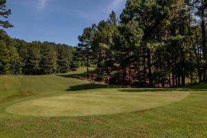 Winston Salem Golf Course Investment Property in Stokes, NC (75 of 92)