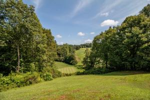 Winston Salem Golf Course Investment Property in Stokes, NC (77 of 92)