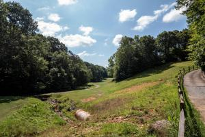 Winston Salem Golf Course Investment Property in Stokes, NC (67 of 92)