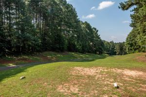 Winston Salem Golf Course Investment Property in Stokes, NC (83 of 92)