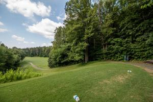 Winston Salem Golf Course Investment Property in Stokes, NC (60 of 92)