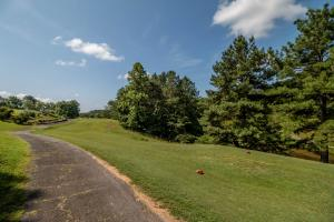 Winston Salem Golf Course Investment Property in Stokes, NC (92 of 92)