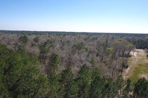 Hunting-Recreational Tract in Montgomery, TX (21 of 24)