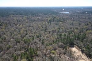 Hunting-Recreational Tract in Montgomery, TX (17 of 24)