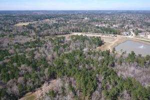 Hunting-Recreational Tract in Montgomery, TX (22 of 24)