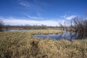 Waterfowler Paradise  in Lincoln, OK (8 of 122)