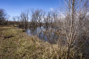 Waterfowler Paradise  in Lincoln, OK (9 of 122)