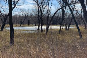 Waterfowler Paradise  in Lincoln, OK (83 of 122)