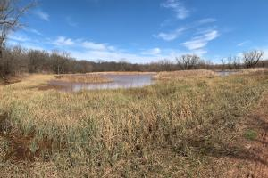 Waterfowler Paradise  in Lincoln, OK (72 of 122)