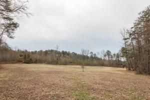 Caswell Hunting Tract in Caswell, NC (19 of 98)