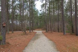 Caswell Hunting Tract in Caswell, NC (73 of 98)