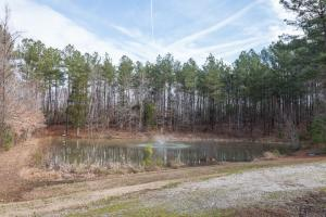Caswell Hunting Tract in Caswell, NC (82 of 98)