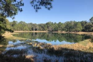 Scott Hill Farm - Hunting / Recreational Estate - Beaufort County SC