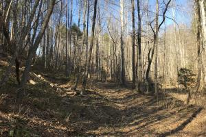 Colletsville Forest Creek LOT 64 in Caldwell, NC (4 of 12)