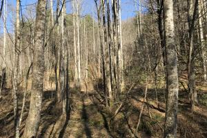 Colletsville Forest Creek LOT 64 in Caldwell, NC (11 of 12)
