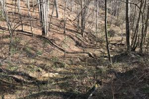 Colletsville Forest Creek LOT 64 in Caldwell, NC (2 of 12)