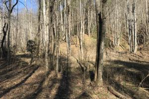 Colletsville Forest Creek LOT 64 in Caldwell, NC (7 of 12)