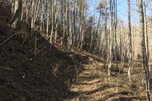 Colletsville Forest Creek LOT 64 in Caldwell, NC (10 of 12)