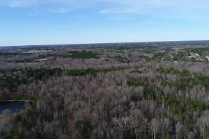 Airport Timberland & Potential Development Opportunity  - Johnston County, NC