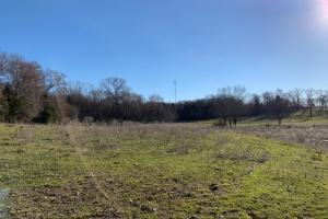 11 acres, Henderson County, Great Building Sites, Agriculture - Henderson County TX