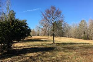 Horse Property with Open Land & Hardwoods in Anderson, SC (27 of 36)
