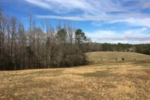 Horse Property with Open Land & Hardwoods