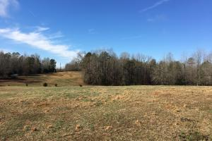 Horse Property with Open Land & Hardwoods in Anderson, SC (8 of 36)