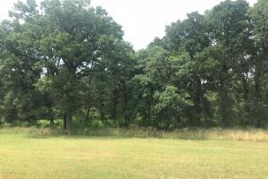 21 acres near Cedar Creek Lake, Rolling pasture, Timber, Ponds - Henderson County TX