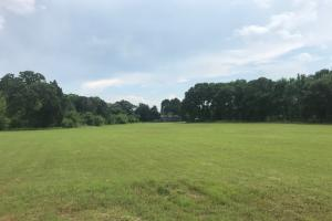 20 acres near Cedar Creek Lake, Excellent mix of Timber and Rolling Pasture in Henderson, TX (8 of 15)