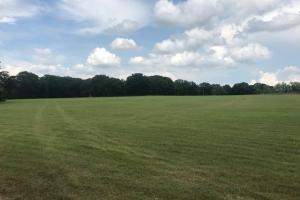 20 acres near Cedar Creek Lake, Excellent mix of Timber and Rolling Pasture in Henderson, TX (7 of 15)