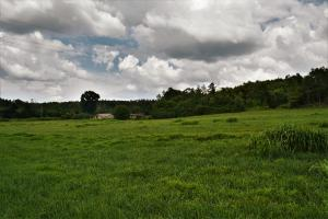 Robertson Road Pasture and Homesite - Calhoun County AL