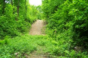 0 South Tower Rd, Garrison (Mille Lacs Lk Area): more trails (16 of 17)
