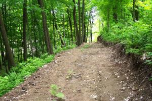 0 South Tower Rd, Garrison (Mille Lacs Lk Area): trail view (14 of 17)