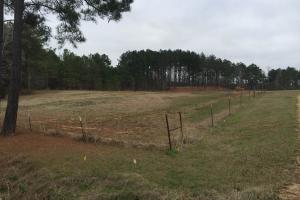 Beautiful Country Home with 4.94 Acres in Leake, MS (23 of 26)