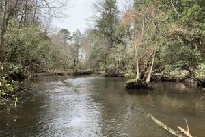 Blackwater River Cabin Hunting & Timber Retreat - Baldwin County AL