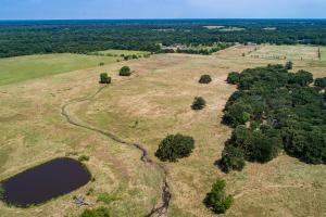 66 Acres with Pond, Building Sites, Trees, Meadows - Kaufman County TX