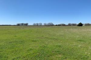 20 acres North of Mabank  (5 of 5)
