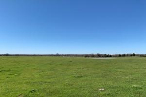 Farmland on 20 acres North of Mabank  (4 of 5)