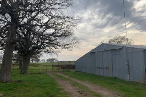 Barn on 20 ac. with large mature trees (2 of 6)