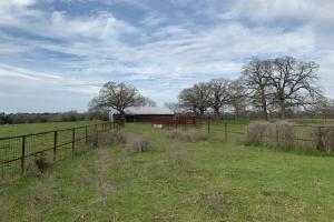 Pipe fencing is one of many amenities on this 20 ac. tract North of Mabank (5 of 6)