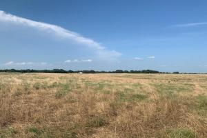 20 acres on Bar 10 Lane in Mabank (2 of 8)