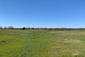 <p>16 acres north of Mabank&nbsp;</p>